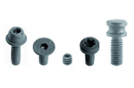 Screw for wedge M6x25 STEI pin